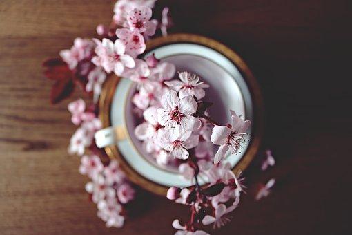 flor azar
