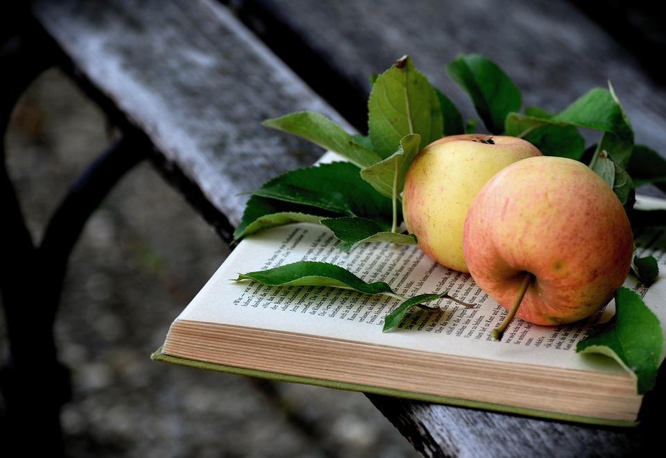 manzanas sobre libro