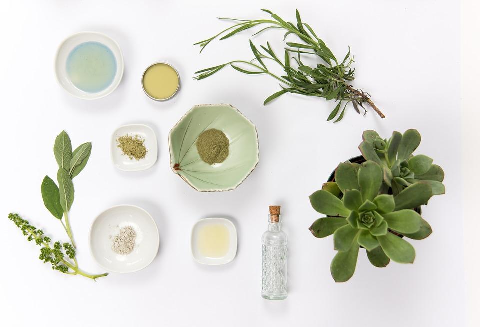 imagen plantas para elaborar cosmeticos