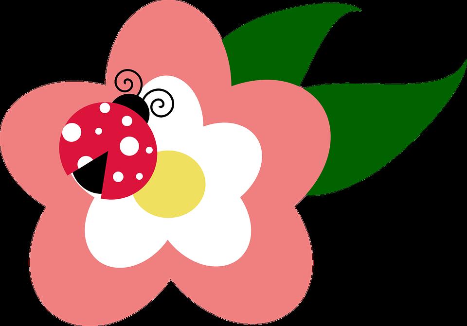 mariquita sobre flor