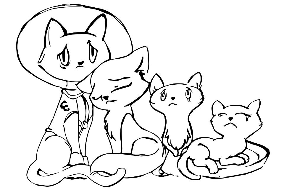 dibujo gatos familila