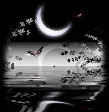 luna y mariposas