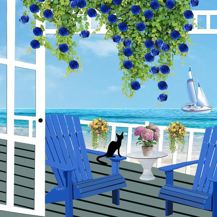 pintura de mar y gato