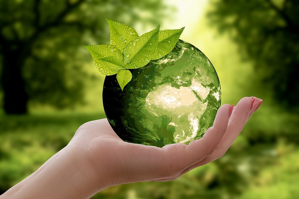bola del mundo verde y eco