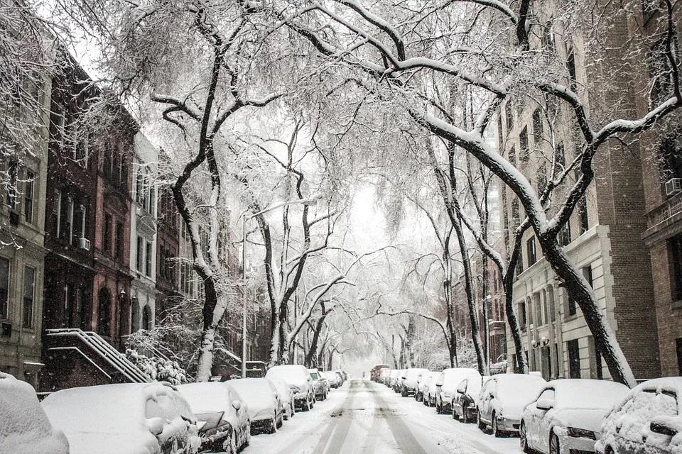 calle nevada