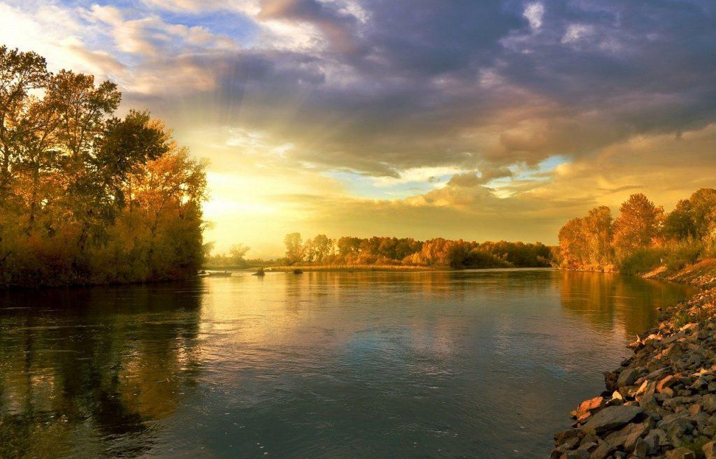 rio arboles, otoño